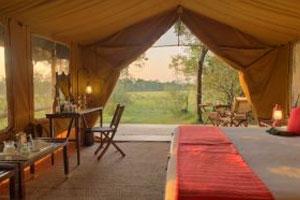 Kenya Conservation Safari - Day 10