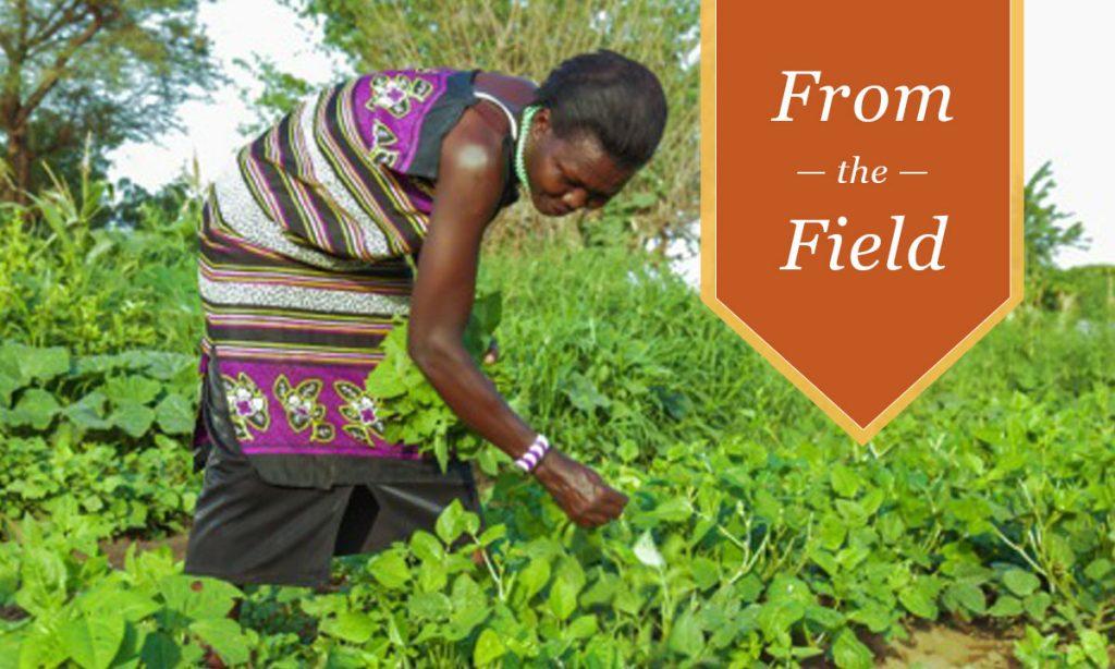 Conservation & Livelihoods in Kenya's South Rift